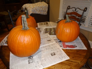 Pumpkins and Dogs 001