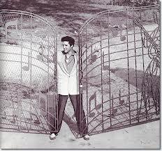 Elvis Gate